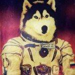 cane in tuta spaziale