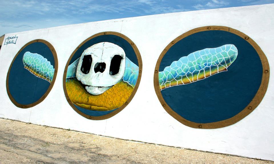 streetart vedo a colori