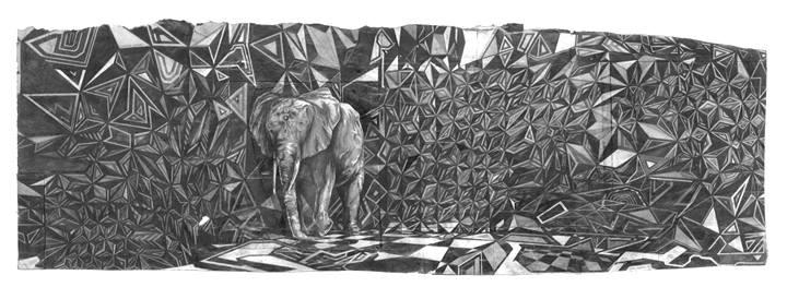 elefante charlie