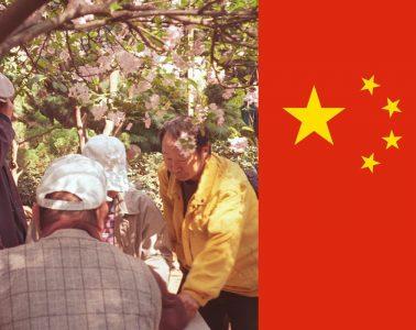 cina come vivono i cinesi